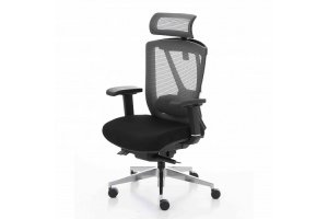 ERGO CHAIR 2